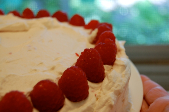erect raspberries atop a rather drippy incarnation of tres leches cake